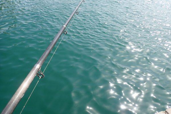 百均浪漫◆サビキ仕掛け ピンクスキン 針4号 ハリス0.6号 幹糸1号 枝長5cm。釣りで使ってみたけど釣果はゼロ。次回に期待。