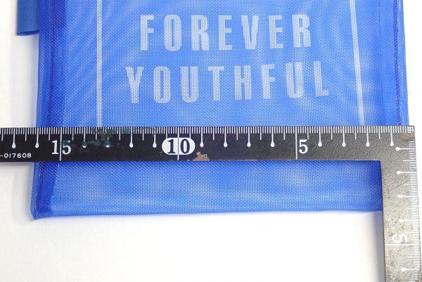 百均浪漫◆16x13cmのメッシュポーチ。寸法測定。
