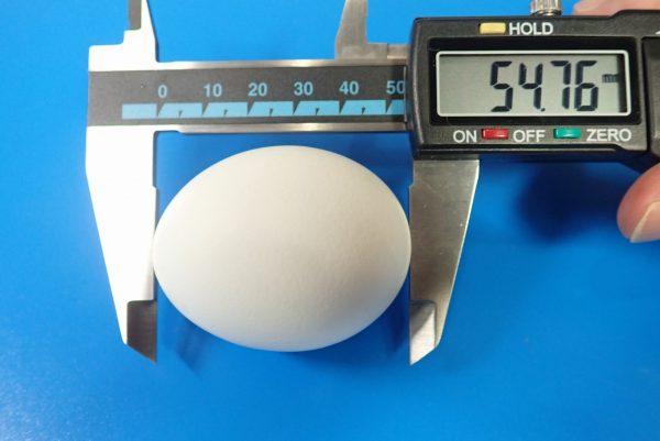 百均浪漫◆味つけ ゆでたまご2個。一応、卵のサイズも測っておく。