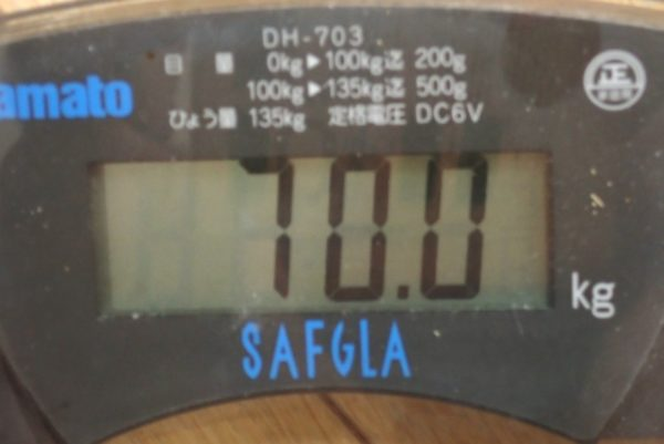 百均浪漫◆モリトク・リチウムコイン電池・CR 2032。体重計に入れてみました。無事使えました。